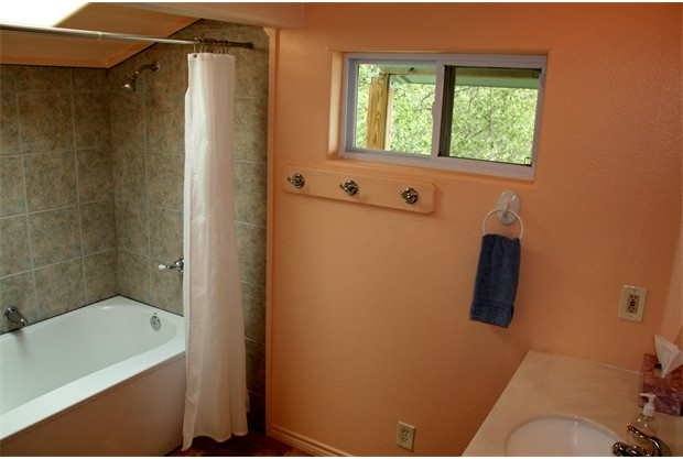 Bathroom with skylight over oversize bath tub and shower